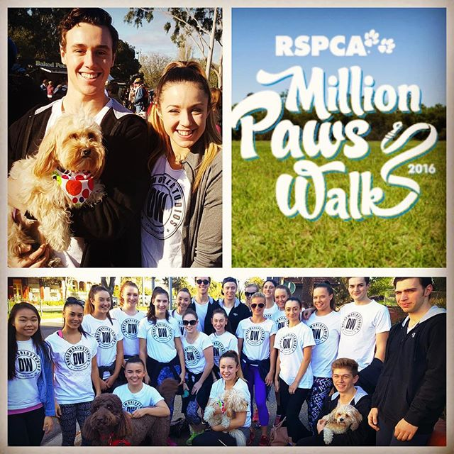 dance world studios students million paws walk 2016